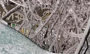 Freezing Rain Covers Environment in Ice