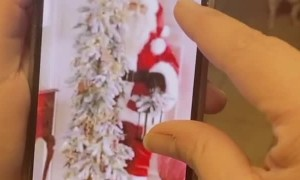 Confusion Over Christmas Ornament