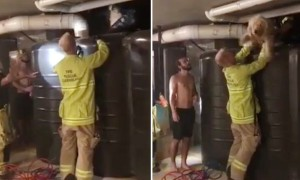 Firefighters rescue dog stuck between water tank and a wall