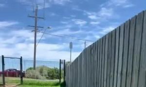 Puppy Friendly Fence