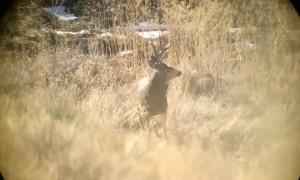 Montana Hunter Hits Shot in Slow Motion