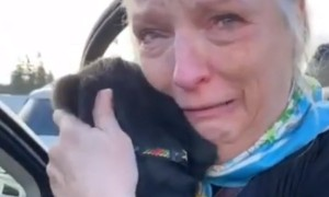 Mom Can't Hold Back Emotions After Christmas Puppy Surprise