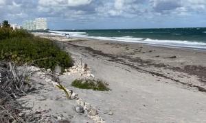 Small Plane Makes Emergency Landing on South Florida Beach
