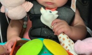 Baby Has Hilarious Reaction to Sensory Development Toy