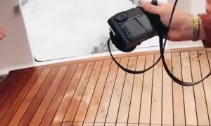 Friendly Sea Lion Hops into Boat