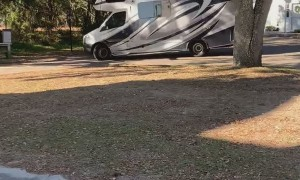 RV Slams Rooftop Into Tree