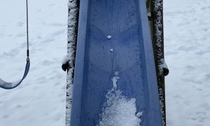 Curious Kitty Slips off Snow Filled Slide