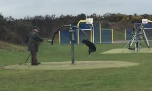 Older Gentleman Pushing Dog on Spinning Seesaw