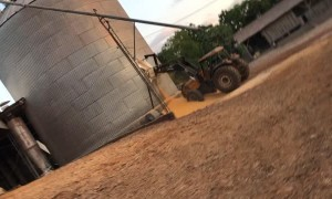 Grain Silo Gives Way Spectacularly