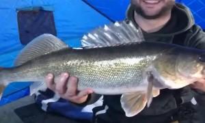 Fish Spits Hook Right Back at Fisherman