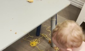 Spaghetti Twins