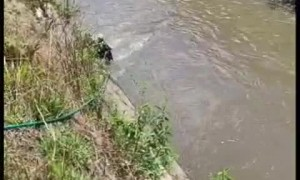 Off-Duty Police Officer Saves Stranded Dog in Canal
