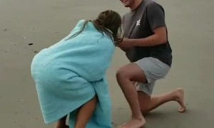 The Jumping Proposal