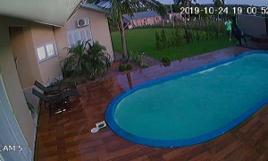 Horse Escapes and Accidentally Falls into Pool