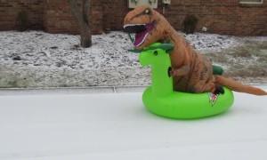 T-Rex Slides Down Snowy Hill
