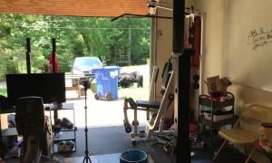 Bear Family Admires Garage Gym Setup