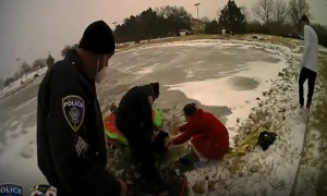 Southlake Police help rescue dog from frozen pond