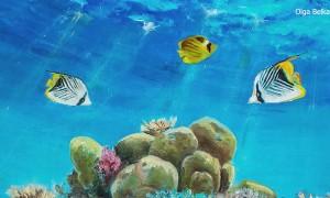 Scuba Diver Makes Underwater Masterpiece