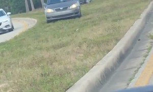 Impatient Drivers Decide to Use Grass Median