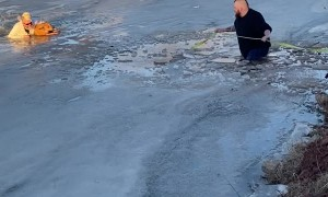 Good Samaritans Rescue Dog From Icy Lake