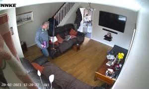Rescue Dog Gets Startled by Sliding Broom