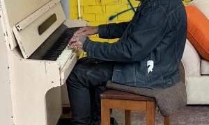 The Tattooed Pianist