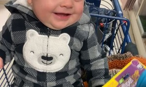Squeaking Dog Toy Sends Boy into Giggling Fit