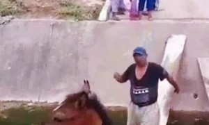 Woman Distraught Over Men Moving Horse