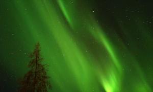 Aurora Borealis Dances Across the Night Sky