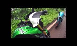 Cow Crossing Road Hits Motorcyclist