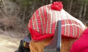 Boxer Riding ATV in Style