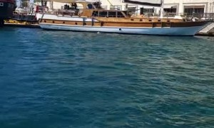 Sea Lion Boards Boat for Snack