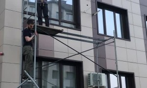 Workers Save Cat From Third-Story Window Fall
