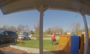 Running Dog Rips Porch Post Right off House