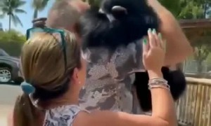 Heart-melting reunion between a monkey and the couple who raised him