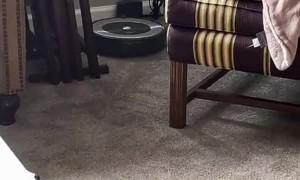 Robot Vacuum Draws Unexpected Design