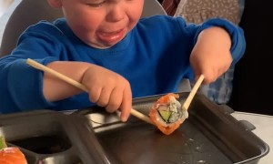 Hangry Child Finds Chopsticks Challenging