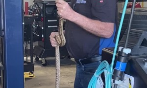 Mechanic Calmly Removes Snake During Car Service