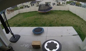 Gusty Wind Gives Trampoline to Neighbor as a Gift