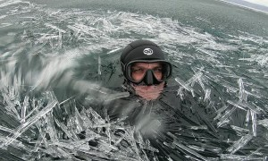 Swimming in an Ocean of Ice Needles