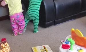 Twins Turn Furniture Into Climbing Fun Zone