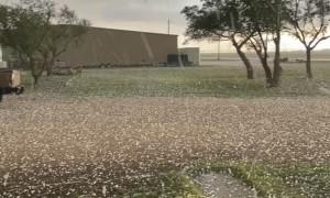 Golf Ball Sized Hail Rains Down in Texas