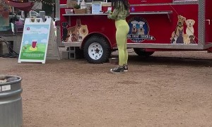 Food Truck for Pups