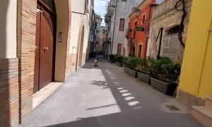 Dog Skates Through Italian Alleys