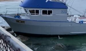 Boat Drives Full Throttle Into Dock