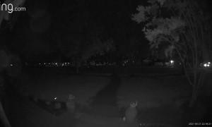 Video Doorbell Thwarts Ding Dong Ditch Prank