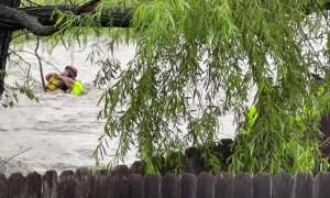 Heroic High Water Rescue