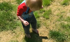 Toddler Discovers Her Shadow