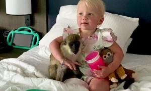 Monkey Hugs Her Human Best Friend