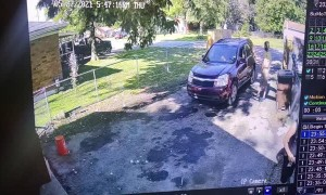 Quick Thinking Boy Dodges an Old Falling Tree